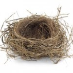 empty nest syndrome image