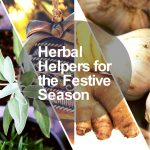 herbal helpers festive season image