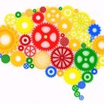 how to give your brain a workout