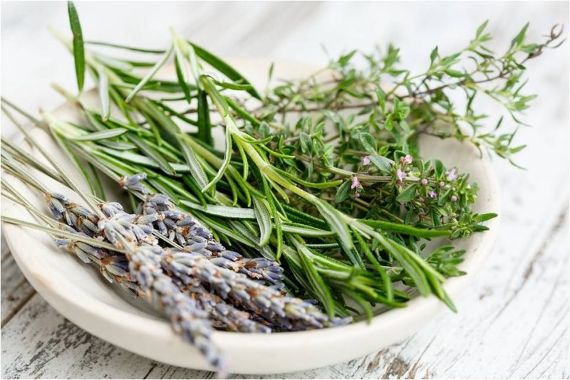rosemary to combat wrinkles image