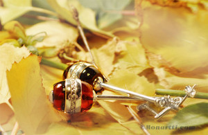 holistic properties on amber image