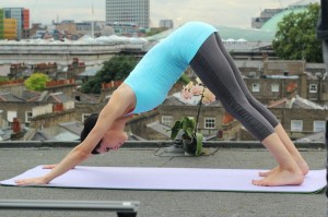downward dog pose image