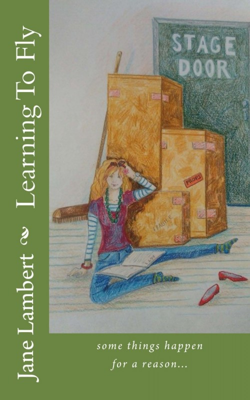 Jane Lambert learning to fly book