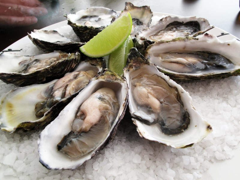 oysters for a good nights sleep image
