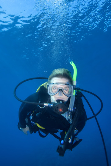 diving on bucket list image