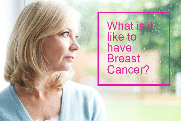 what is it like to have breast cancer image