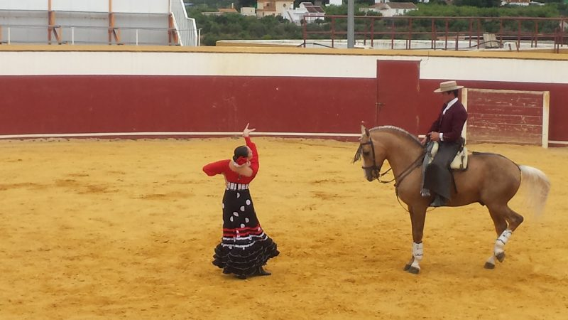 spanish horse show with flamenco image