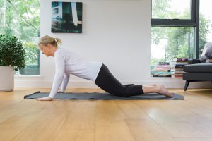 press up for menopause bone health image