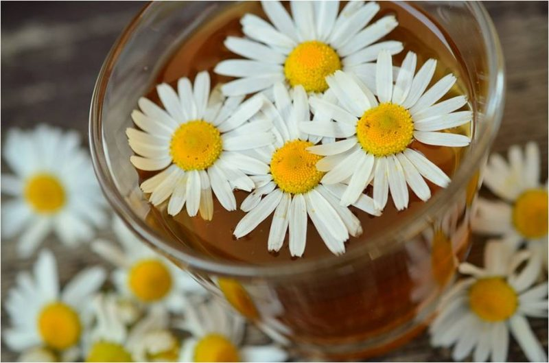 chamomile to combat wrinkles image