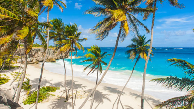 50plus winter holiday in barbados image