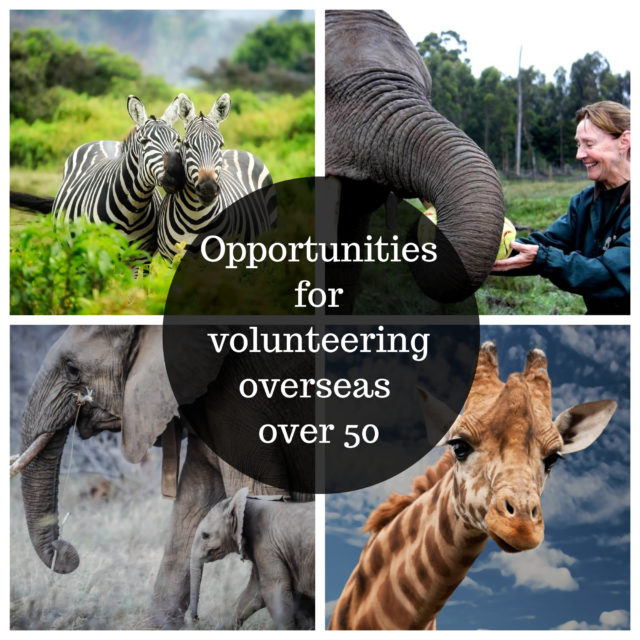 how to travel and volunteer image