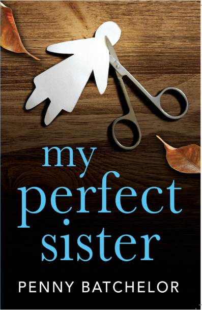 my perfect sister book
