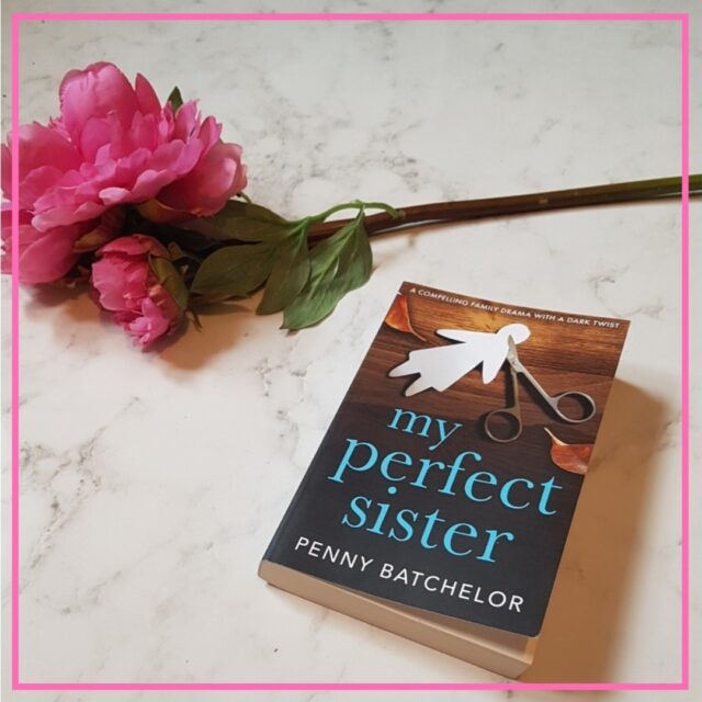 book review my perfect sister image