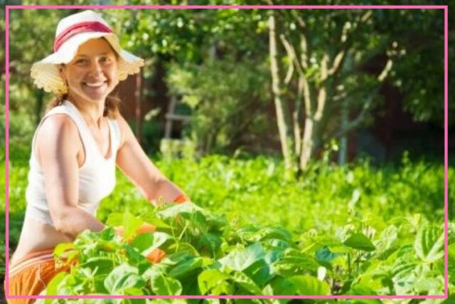 9 Tips To Get Fit While Gardening image